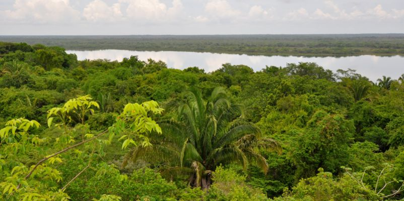 Rain Forest and Lagoon View in Belize