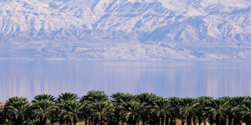 Dead Sea, palm grove and mountain, Israel