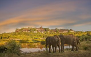 Wildlife & Safari Tours
