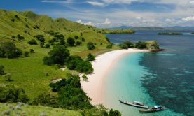 Corals & Cultures of Indonesia