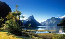 The Best of New Zealand