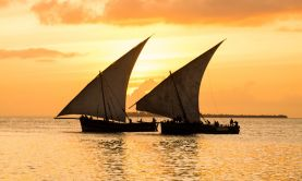In the Wake of the Dhows