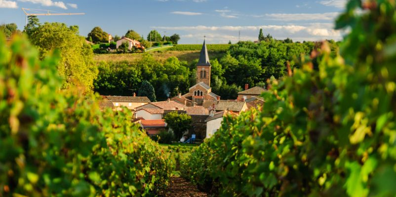 Historic village and vineyard in the Beaujolais region