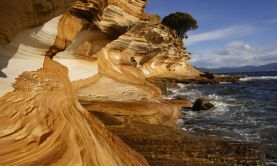 Wilderness & Wonders of Tasmania & New Zealand