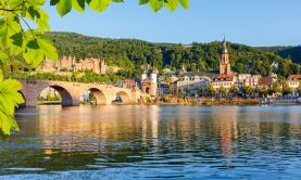 Springtime on the Rhine & Moselle
