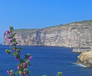 Cliffs of Xlendi, Gozo