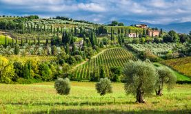 A Week in Tuscany