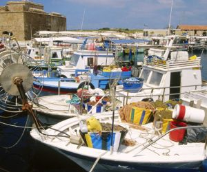 Fishing boats, Paphos harbour
