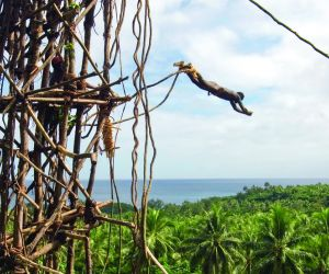 Traditional land diving, Pentecost Island