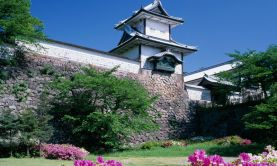 Japanese Spring Blossoms, Gardens & Culture
