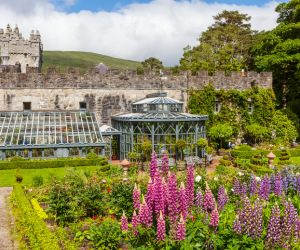 The walled garden at Glenveagh Castle