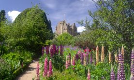 The Taming of Nature - Castles, Gardens & Estates of North East Scotland