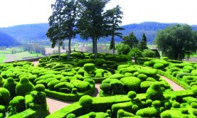 Great Gardens of the Dordogne