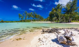 Hidden Treasures of the South Pacific