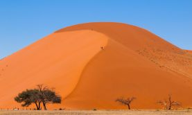Namibia by Private Train - 2022