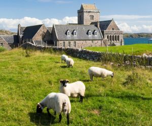 Saint Columba's Abbey, Iona