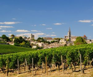 Vineyards of Saint-Emilion